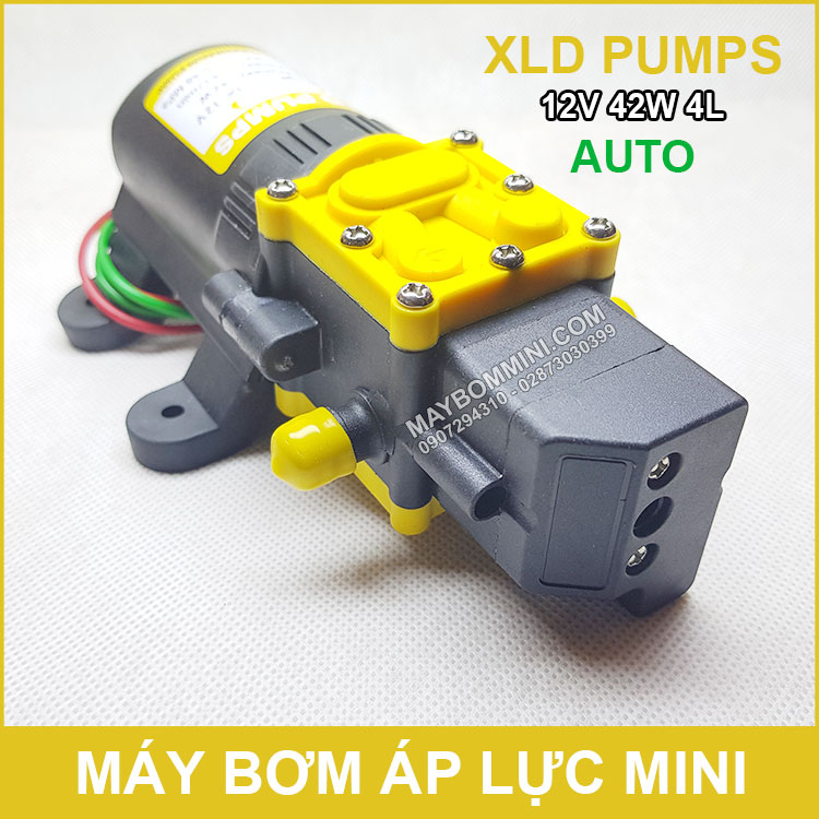XLD Pump 12V 42W 4L