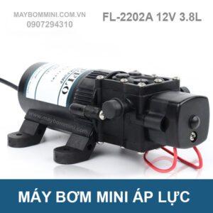 May Bom Nuoc Mini 12v Fl 2202a.jpg