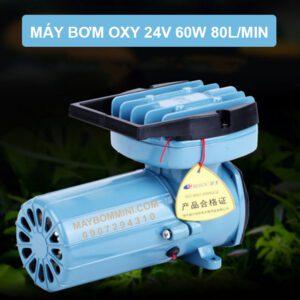 May Tao Oxy 24V