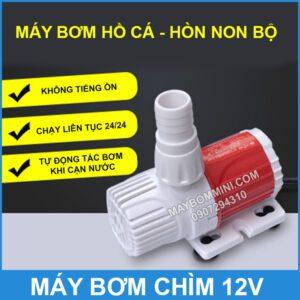 Bom Nuoc Ho Ca Hon Non Bo Mini 12v